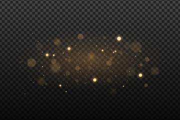 Wall Mural - Abstract golden lights on a dark transparent background. Glares with flying glowing particles. Ligh effect. Vector illustration