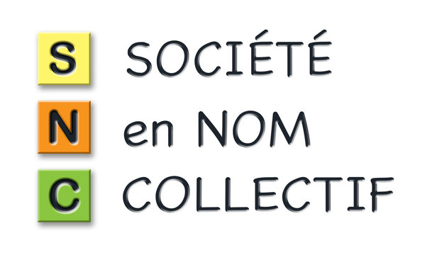 SNC initials in colored 3d cubes with meaning in french language