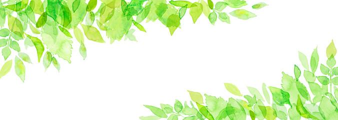 Fototapeten Lime grun 水彩 新緑フレーム