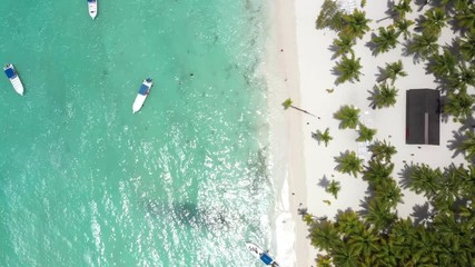 Fototapete - Tropical island with coconut palm trees and turquoise caribbean sea. Travel destinations. Summer holidays. Aerial view from drone