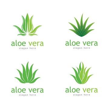 Aloe vera cosmetic herbal vector icon