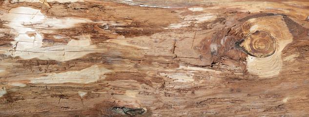 Grobe braune Holzstruktur der Oberfläche eines Baumstammes ohne Rinde in Nahaufnahme - Panorama