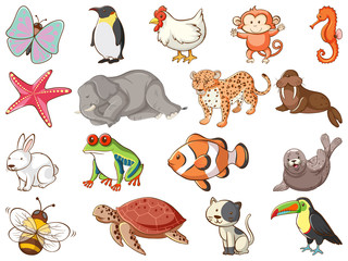 Canvas Prints Kids Large set of wildlife with many types of animals