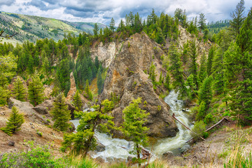 River in a green canyon in Yellowstone