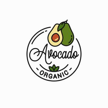Avocado fruit logo. Round linear of avocado slice