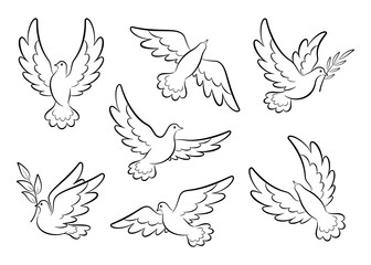 Flying dove sketch vector set. Pigeons set peace and love symbols. Dove with olive branch Christian religious symbol.  Collection of flying and soaring bird logos. Isolated. Vector illustration Fotomurales