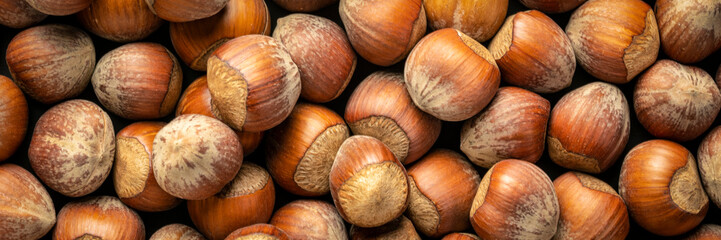 Acrylic Prints Macro photography hazelnuts on dark background