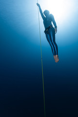 Wall Mural - Woman freediver ascends along the rope from the depth
