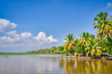 Scenery of Coconut Trees, Backwaters and a clear blue sky. From Kerala, India.