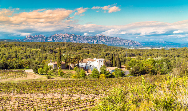 A cellar at Penedes wine region with Montserrat mountains in the distance. Catalonia, Spain.