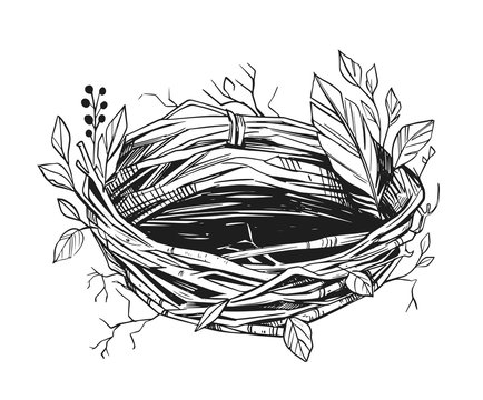 Illustration of a bird's nest. Hand drawn sketch converted to vector. Black on transparent