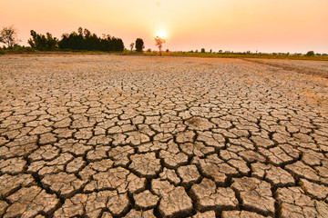 The land is dry and parched because of global warming