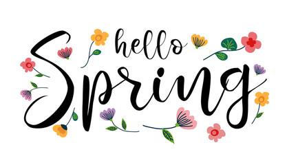 Hello Spring, handwritten lettering vector illustration
