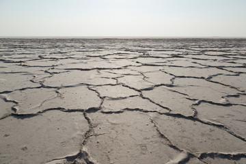 Barsakelmes salt lake near the Ustyurt plateau, Karakalpakstan, Uzbekistan