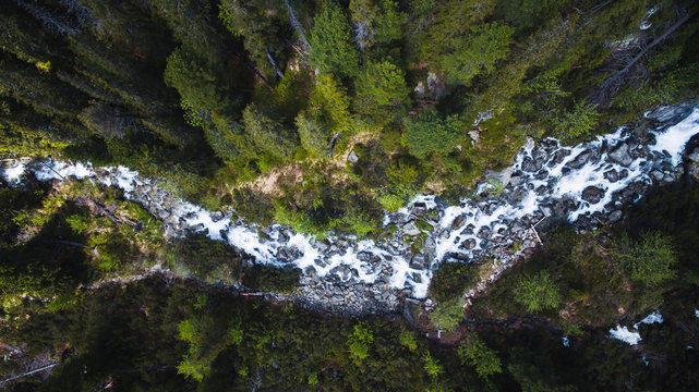 Aerial top down shot of flowing stream river surrounded by high trees in forest, Popradska Pleso,High Tatras, Slovakia