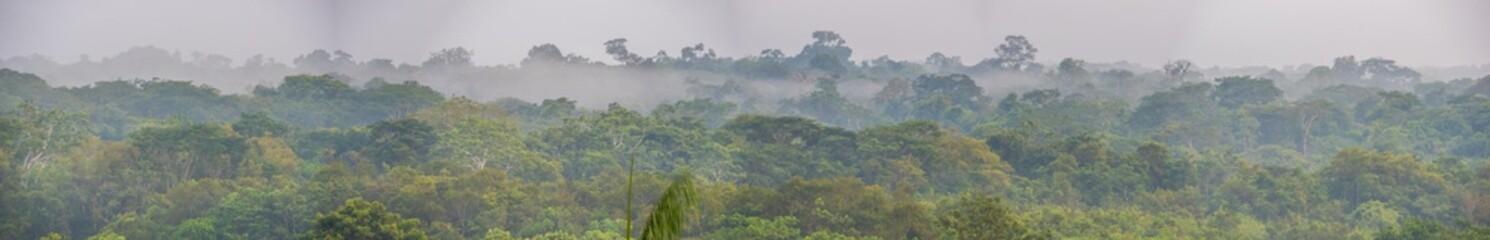 Photo sur Toile Brésil Sunset, Amazon