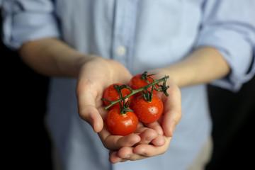 agriculture diet tomato vegetables nutrition Fototapete