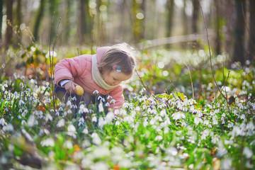 Cute little girl playing egg hunt on Easter Fototapete