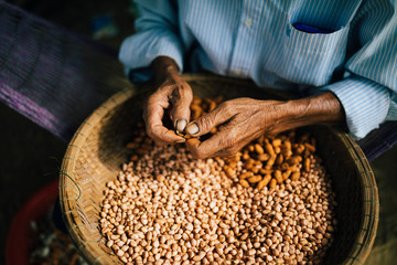 High angle close up of man shelling peanuts outside of his house.,Hoi An
