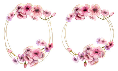 Cherry blossom, a cherry blossom branch with pink flowers in a Golden round and oval frame on a white isolated background. Image of spring. Frame. Watercolor illustration. Design element