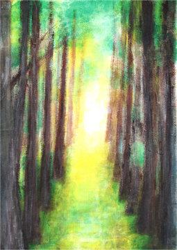 神秘的な木々