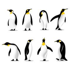 Fototapeta Cute penguins set logo obraz