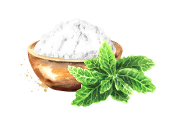 Stevia rebaudiana plant, Natural sweetener, and bowl with powder. Hand drawn watercolor illustration,  isolated on white background