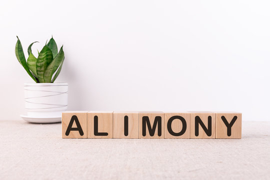 ALIMONY word made with building blocks on a light background