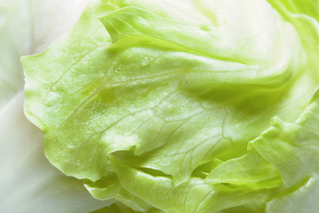 Green salad leaf closeup. Fresh iceberg lettuce. Healthy vegetable, vegetarian food. Selective focus