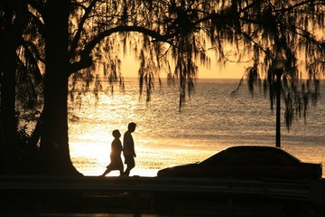 Poster Indiens Silhouettes of a couple walking along the beach under a pine tree at sunset