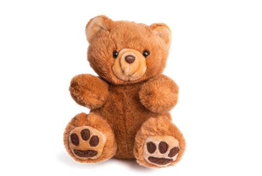 teddy bear soft toy isolated