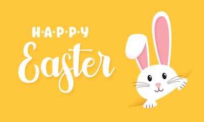 Easter rabbit, easter Bunny. Vector illustration.
