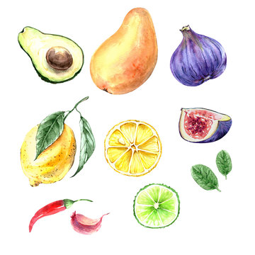 Set of watercolor illustrations of fruits and vegetables on a white background. green avocado fruits, lemon with leaves, yellow mango, fig slice.