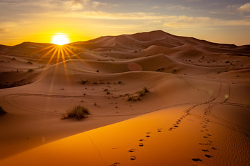 Sunrise in Sahara desert, Morocco