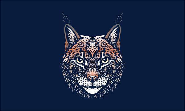 lynx on dark background