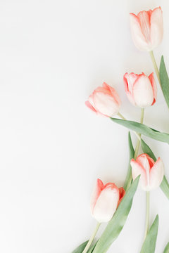 Spring flat lay. Pink tulips border on white background, space for text. Stylish soft spring image. Floral Greeting card mockup. Happy women's day. Happy Mothers day. Creative vertical photo