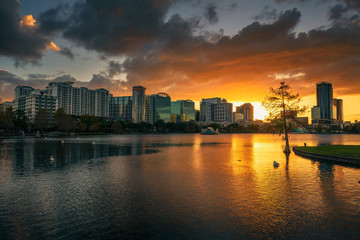 Wall Mural - Colorful sunset above Lake Eola and city skyline in Orlando, Florida