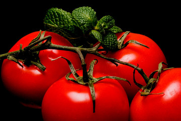 Red tomatoes on a branch with mint on a black background close-up, space for text