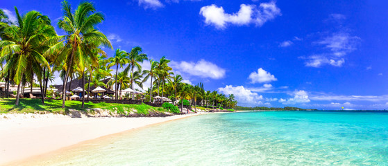 Zelfklevend Fotobehang Donkerblauw Tropical paradise beach with white sand and palms trees. Travel in tropical island Mauritius
