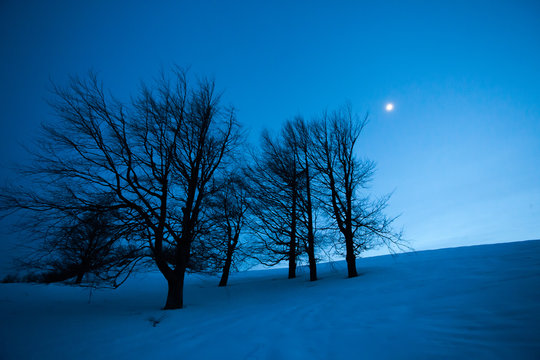 Fairy winter night landscape with snow and moon