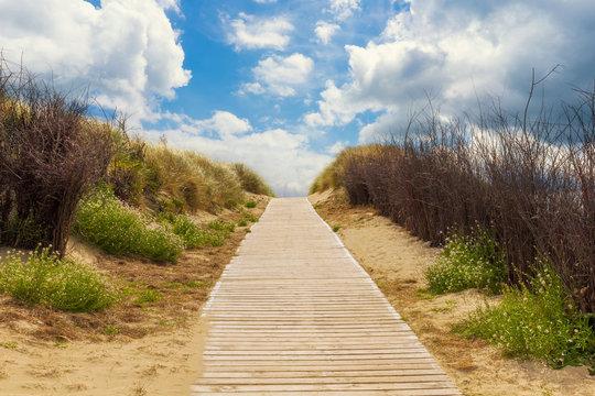 Wooden path to the beach between the dunes, Langeoog Germany