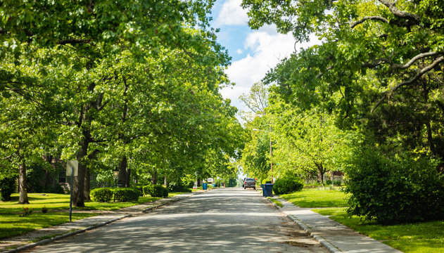 Empty street under green trees and blue sky in spring. Residential neighborhood in southwest USA.
