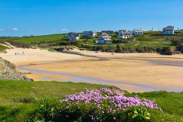 Fototapete - Treyarnon Beach Cornwall England