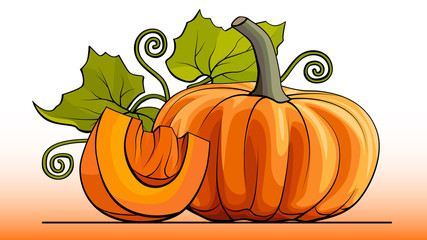 Vector simple illustration a group of pumpkin with slice on a line (side view).