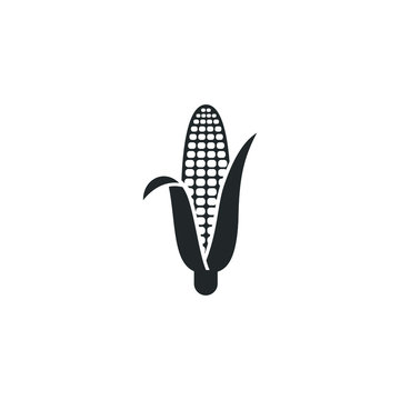 corn Icon vector sign isolated for graphic and web design. wheat oats, Vegetarian, vegan, harvest. Vegetables symbol template color editable on white background