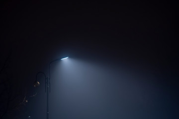Fotomurales - Lamp post in fog. Street light's beam in foggy night. Dense fog.