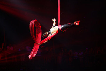 Brazilian strong sexy man do performance on aerial silks in red lights, drop on aerial silks.  Sport training gym and lifestyle concept.