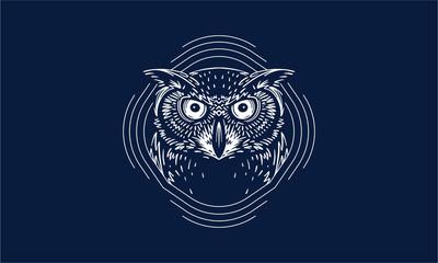 owl on dark background