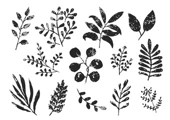 Collection of black and gray monochrome textured ink leaves and branches. Unique hand drawn set of tropical and daisy herbs for botanical background design, textile patterns, frames, greeting cards Wall mural