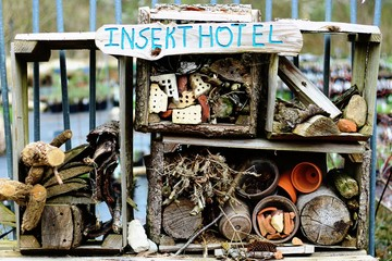 Permacultural insect hotel